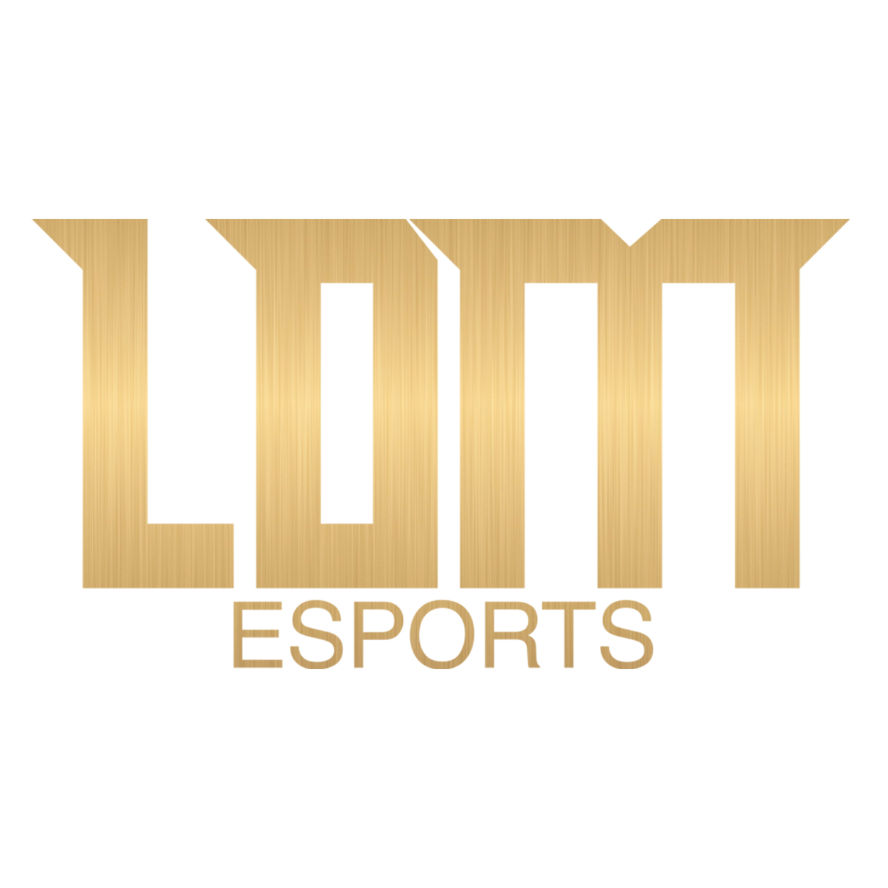 LDM Esports
